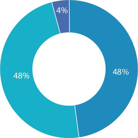 4% das horas adicadas a titoría, 48% horas presenciais, e o restante 48% non presenciais
